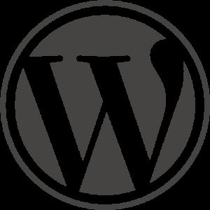 social media wordpress blog